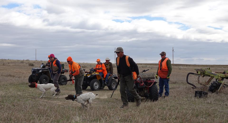 HomePageRockyMountainNSTRA Colorado Gun Dog Training